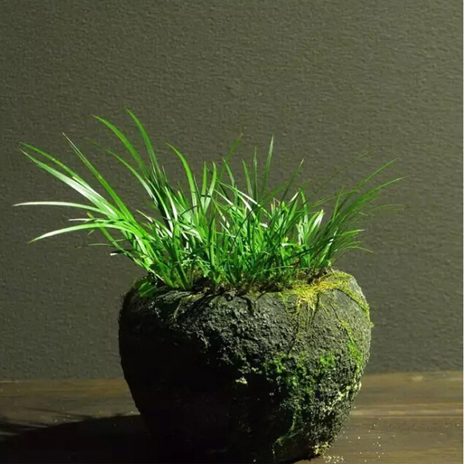 0801-0041 Wholesale Natural River Stone Ball Shape Indoor Flower Pots for Sale